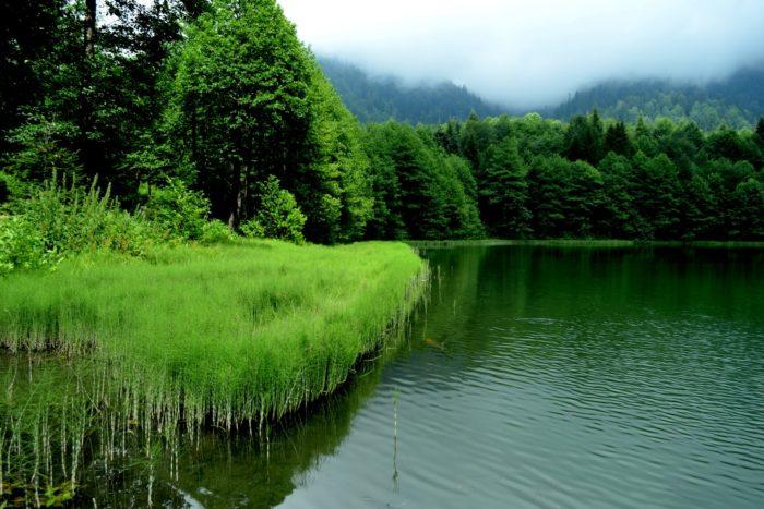جولة البحيرة السوداء