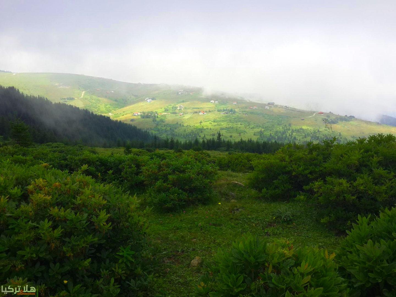 جوله مرتفعات كياباشي